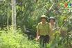 Bảo vệ rừng mùa nắng nóng