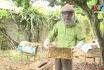 Nghề nuôi ong ở Thanh Sơn
