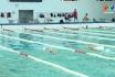 Đội tuyển bơi Phú Thọ luyện tập trở lại