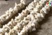 Nông nghiệp Phú Thọ: Phát triển nghề nuôi tằm