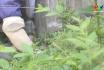 Nông thôn mới Phú Thọ: Nâng cao hiệu quả mô hình tự quản môi trường