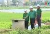Thu gom bao gói thuốc bảo vệ thực vật sau khi sử dụng