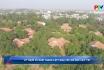 Kỷ niệm 20 năm thành lập làng trẻ em SOS Việt Trì