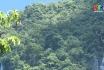 Vườn Quốc Gia Xuân Sơn chủ động PCCR mùa nắng nóng cao điểm