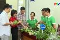 Đảm bảo vệ sinh an toàn thực phẩm trong các nhà trường