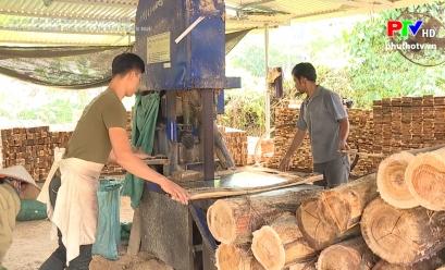 Phát triển nghề chế biến lâm sản ở miền núi