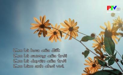 Đến với bài thơ hay - Chơi vơi