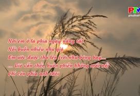 Đến với bài thơ hay: Từ phía ngày nắng tắt