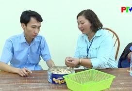 Cơ hội việc làm cho người khuyết tật