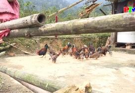 Đặc sản Tân Sơn
