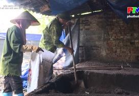 Hiệu quả mô hình nuôi giun quế ở Thanh Sơn