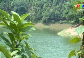 Hồ Ly