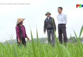 Học Bác mỗi ngày - Gương mẫu đi đầu xây dựng nông thôn mới
