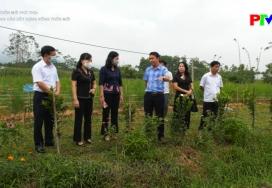Hội nông dân xây dựng nông thôn mới