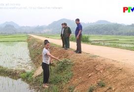 Nông thôn mới Phú Thọ - Huy động các nguồn lực đầu tư hạ tầng NTM