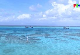 Khoảnh khắc cuộc sống - Màu xanh trên Quần đảo Trường Sa