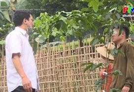 Khởi nghiệp - Mô hình trồng chanh leo trên đất Thạch Kiệt