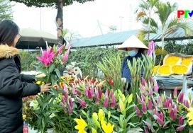 Khoảnh khắc cuộc sống - Chợ hoa đón xuân