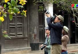 Khoảnh khắc cuộc sống - Hoa mai