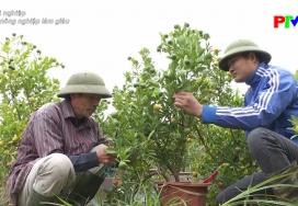 Khởi nghiệp: Lấy nông nghiệp làm giàu