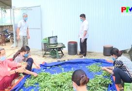 Lao động việc làm - Tạo việc làm cho phụ nữ nông thôn
