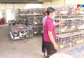 Lao động Việc làm - Việc làm cho lao động nữ nông thôn