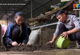 Muôn cách làm giàu - Mô hình nuôi giun quế ở Đoan Hùng