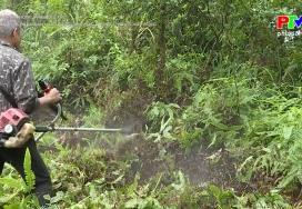 Tu sửa đường băng trắng cản lửa trong công tác PCCC rừng