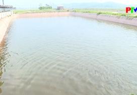 Nông nghiệp Phú Thọ: Nuôi cá trong ao bán nổi