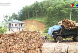 Nông nghiệp Phú Thọ: Chính sách hỗ trợ phát triển lâm nghiệp