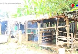 Nông dân học nghề nông