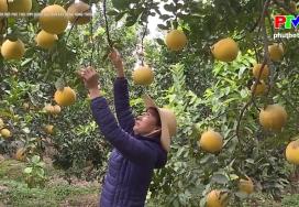 Nông thôn mới Phú Thọ - Huy động sức dân xây dựng nông thôn mới