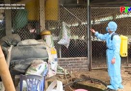 Phòng dịch bệnh cho đàn vật nuôi