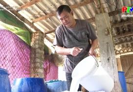 Nông thôn mới Phú Thọ: Cần chính sách cho chương trình OCOP