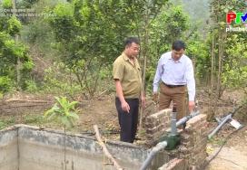 Nông thôn mới Phú Thọ: Hiệu quả từ chuyển đổi cây trồng
