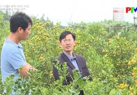 Nông thôn mới Phú Thọ: Sắc xuân nông thôn mới