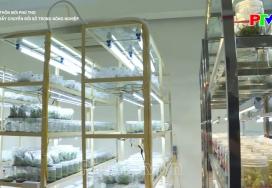 Nông thôn mới Phú Thọ - Thúc đẩy chuyển đổi số trong nông nghiệp