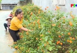 Nông thôn mới Phú Thọ - Phụ nữ góp sức xây dựng nông thôn mới