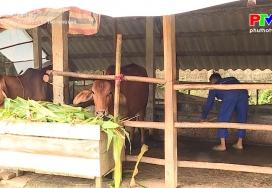 Phát triển nguồn vốn quỹ hỗ trợ nông dân