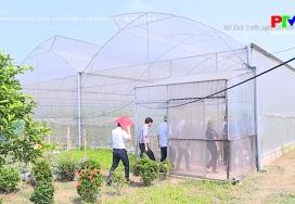Đẩy mạnh ứng dụng chuyển giao KHCN trong sản xuất nông nghiệp