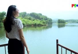 Sắc màu Tây Bắc: Phú Thọ một khúc ca xanh