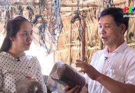 Sản phẩm từ làng - Nấm Đồng Cam