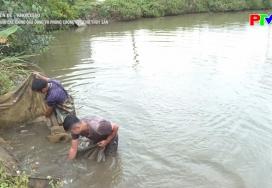 Ương nuôi các giống qua đông và phòng chống rét cho thủy sản