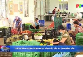 Triển khai chương trình OCOP đảm bảo đầu ra cho nông sản