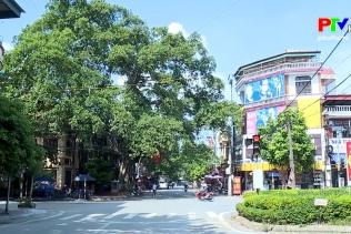 Bánh trung thu gia truyền thị xã Phú Thọ