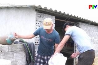 Muôn cách làm giàu - Làm giàu từ sản xuất nuôi cá bột giống