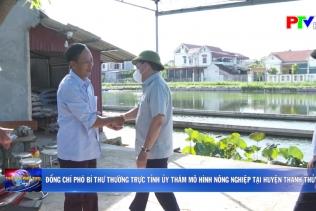 Đồng chí Phó Bí thư thường trực Tỉnh ủy thăm mô hình nông nghiệp tại huyện Thanh Thủy