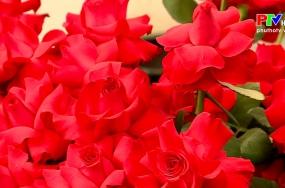 Khoảnh khắc cuộc sống: Hoa cho người thương
